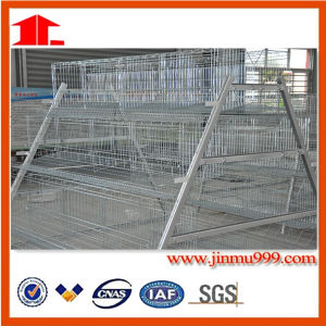 3 Tiers Automayic Layer Chicken Cage in China pictures & photos