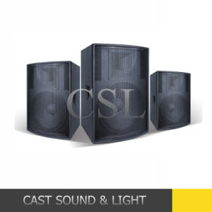 Professional Audio Speaker PA System with Multi-Function pictures & photos