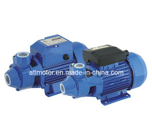 Water Pump (QB60) pictures & photos
