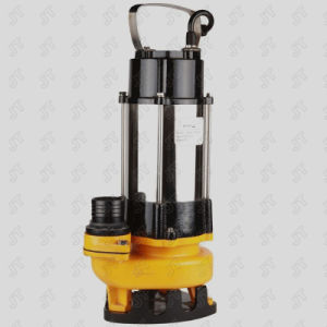 Submersible Pump (JV450 JV750) with CE Approved pictures & photos