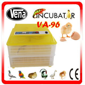 Festival Discount Hold 96 Chicken Eggs Automatic Egg Incubator China pictures & photos