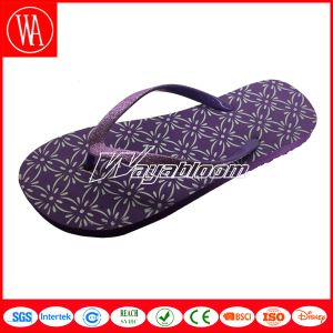 Colorful Flip Flops for Children or Ladies Indoors Comfort Slippers pictures & photos