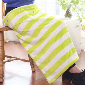 Small Printed Strip Polyester Blanket Flannel Blanket (SR-B170316-40) pictures & photos