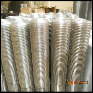 Stainless Steel Filter Mesh pictures & photos