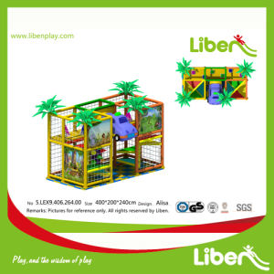 CE Approved China Professional Manufacturer Amusement Park Indoor Playground pictures & photos