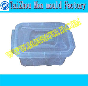 718/2738 Steel Plastic Hot Runner Box Transparent Mould pictures & photos