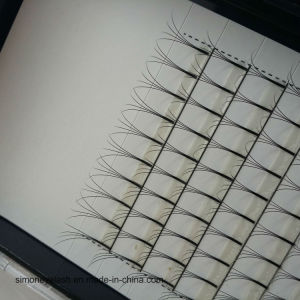 Factory Price Korea Individual Synthetic Volume Lashes pictures & photos
