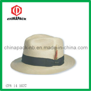 Wide Brim Fedora Hats (CPA-14-1037) pictures & photos