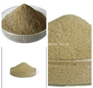 Textile Dyestuff Agent Sodium Alginate
