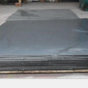Graphite Sheet with Ss316 Tanged Insert pictures & photos
