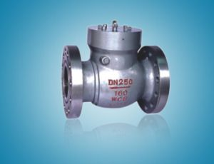 Cast Steel Control API Swing Check Valve