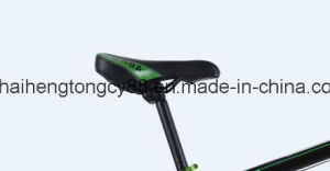 Alloy Mountain Bicycle/Bike with Good Price (SH-MTB014) pictures & photos