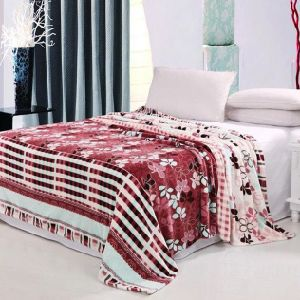 Super Soft Printed Flannel Blanket Sr-B170223-8 Printed Coral Fleece Blanket pictures & photos