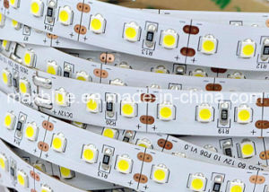 84 LEDs/M DC24V SMD2835 LED Flexible Strip pictures & photos