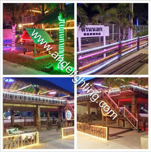 Outdoor Decoration LED Neon Flex Light LED Rope Light pictures & photos