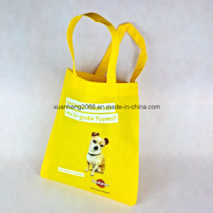 PP Non Woven Promotional Shopping Bag pictures & photos