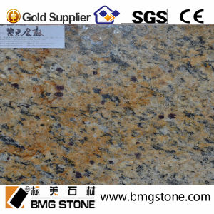 Inexpensive Chinese Santa Cecilia Granite for Floor Tile or Counter