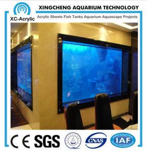 Acrylic Aquarium/Fish Tank pictures & photos