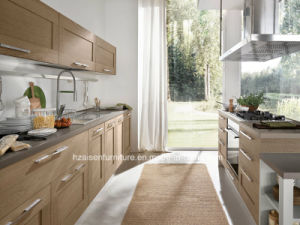 Shaker Solid Wood Door Panel Blum Kitchen Cabinet pictures & photos