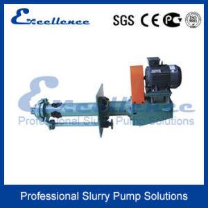 Vertical Submersible Slurry Pump Design (EVM-40P) pictures & photos