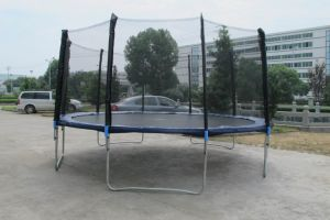 15ft Round Trampoline with Safe Net and Ladder Sx-Ft (E)