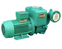 High Quality Centrifugal Pump for Asian pictures & photos