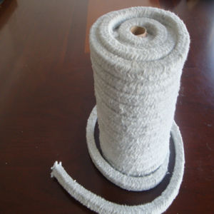 Ceramic Fiber Sleeving Withs. S. Wire Reinforcement pictures & photos