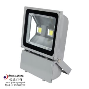 IP66 100W LED Manufacturer Flood Light pictures & photos
