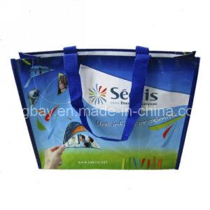 PP Woven Shopping Bag (PPBG09-027)