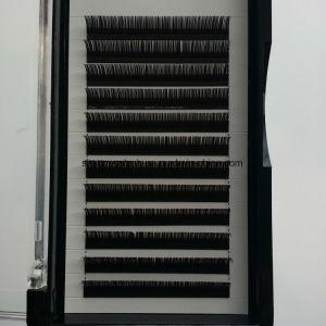 Individual Synthetic Lashes Plant Graft Lashes False Eyelashes pictures & photos