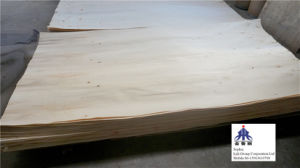 Rotary Cut Poplar Veneer to Egypt pictures & photos