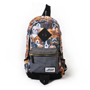 Fashion Backpack, Sling Canvas Bag, Carton Duffel Satchel Bag, Outdoor Casual pictures & photos