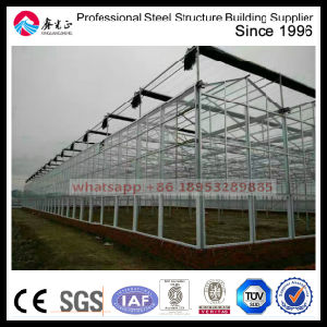 Cheap Multi Span Agricultureal Glass Greenhouse pictures & photos