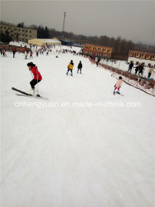 Professional Supplier Outdoor Snow Making Machine for Ski Resort pictures & photos
