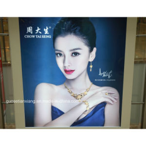 Cosmetic Banner Advertising with PP Paper or Your Demand (tx003) pictures & photos