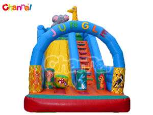 Inflatable Dry Slide/Inflatable Commercial Slide Bb136 pictures & photos