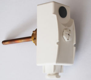 Immersion Thermostat WPR-90GA-2 pictures & photos