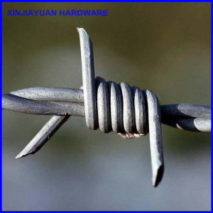 Galvanized Vineyard Barbed Wire Hot Sale pictures & photos