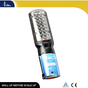 3.6 V 24LED Waterproof Outdoor Lighting (WWL-RH-3.6F)