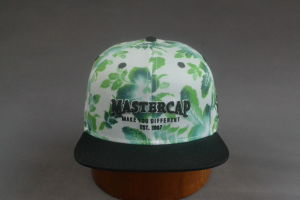 Sublimation Printing 3D Embroidery Flat Brim Hat Snapback pictures & photos