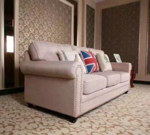 America Leather Sofa, Sectional Sofa, Amazon Sofa (806) pictures & photos