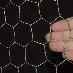 "1/4"" Chicken Wire Hexagonal Wire Mesh pictures & photos"