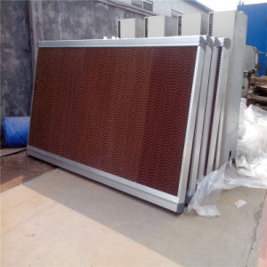 Evaporative Cooling Pad for Greenhouse, Livestock Jiamusi. pictures & photos