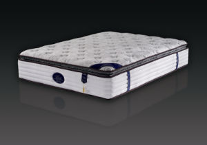 Hotel Furniture Mattress with High Quality (NL-306T) pictures & photos