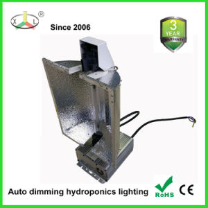 600W Grow Light Ballast for Hydroponics pictures & photos