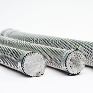 ASTM Standard AAC Aluminum Conductor pictures & photos