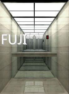 New! ! ! Brightness Passenger Elevator /Passenger Lift pictures & photos