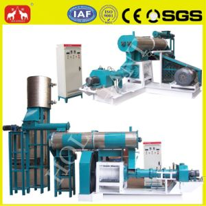 Factory Price High Quality Professional Oil Extruder pictures & photos