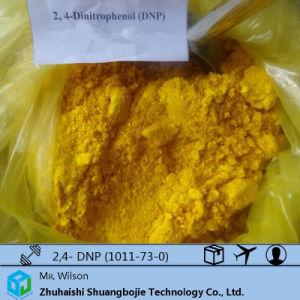 Weight Loss Drugs Sodium 2, 4-Dinitrophenate (DNP) CAS: 1011-73-0