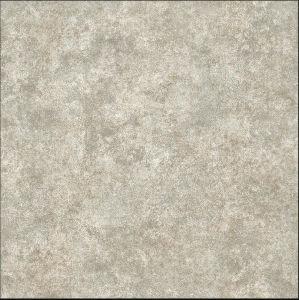 Rustic Floor Tiles (6T13)